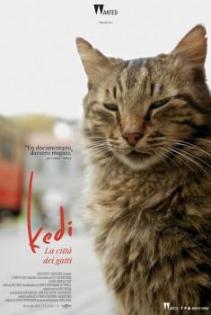 Kedi. La città dei gatti (2016)